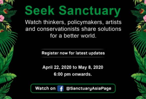 Seek Sanctuary