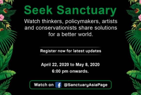 Seek Sanctuary