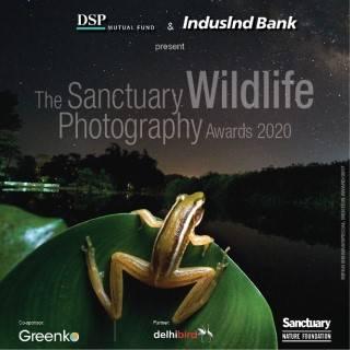 The Sanctuary Wildlife Photography Awards 2020
