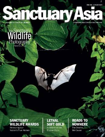 Sanctuary Latest Issue