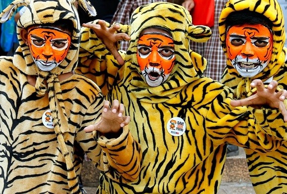 Kids for Tigers